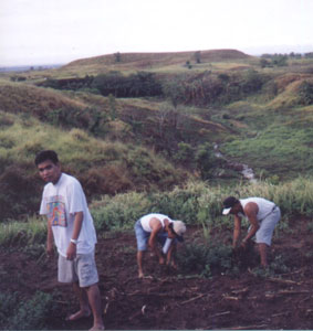 Doing farm work in Isabela
